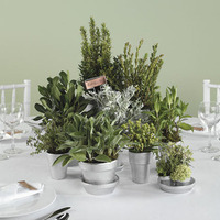 Reception, Flowers & Decor, green, silver, Centerpieces, Centerpiece, Herb