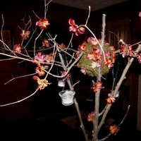 Reception, Flowers & Decor, orange, purple, brown, Centerpieces, Flowers, Centerpiece, Inspiration board