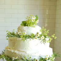 Cakes, white, yellow, green, cake