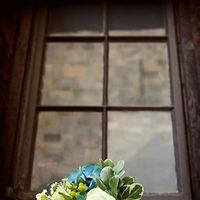 Flowers & Decor, Flowers