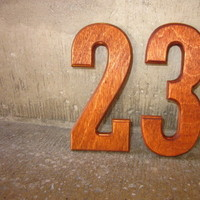 Reception, Flowers & Decor, brown, Numbers