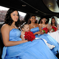 Flowers & Decor, Bridesmaids, Bridesmaids Dresses, Fashion, red, blue, Bridesmaid Bouquets, Flowers, Flower Wedding Dresses