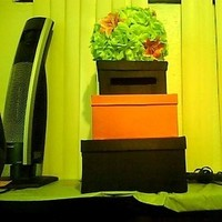 pink, green, black, Cardbox