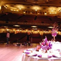 Reception, Flowers & Decor, red, purple