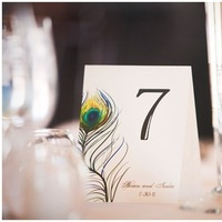 blue, green, Table Numbers, Table, Number, Peacock