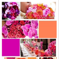 orange, pink, purple, gold, Inspiration board