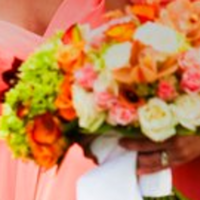 Flowers & Decor, orange, pink, green, gold, Flowers