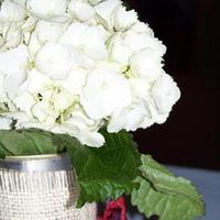 Reception, Flowers & Decor, white, red, silver, Centerpieces, Flowers, Centerpiece