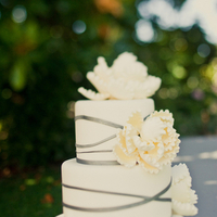 Cakes, yellow, cake, Modern, Modern Wedding Cakes, Grey, Contemporary, Emily john