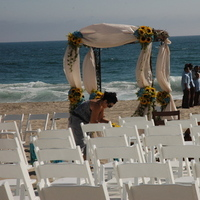 Flowers & Decor, white, yellow, blue, Beach, Flowers, Beach Wedding Flowers & Decor, Wedding, Florist