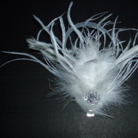 Beauty, Feathers, Hair, Fascinator, Hairpiece, Feather