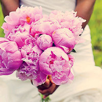 Flowers & Decor, pink, Flowers, Inspiration board