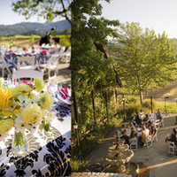 Ceremony, Reception, Flowers & Decor, Wedding, Country, Wine, Napa, Inn, Harvest