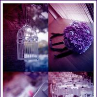 Ceremony, Reception, Flowers & Decor, purple, blue