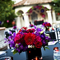 Reception, Flowers & Decor, red, purple, black, Flowers, Inspiration board