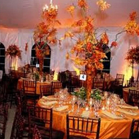 Reception, Flowers & Decor, orange, red, brown, Flowers, Inspiration board