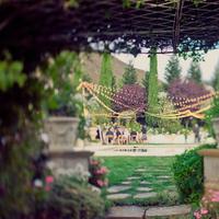 Reception, Flowers & Decor, Flowers, Lights, Erin alan