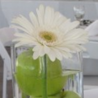 Reception, Flowers & Decor, white, green, Flowers, Apples, Daisies