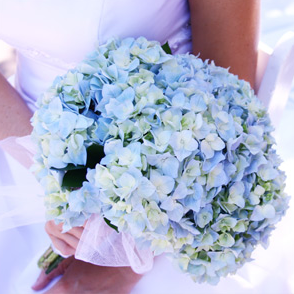 Ceremony, Flowers & Decor, blue, Ceremony Flowers, Flowers, Hydrangea