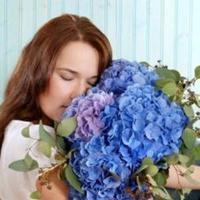 Flowers & Decor, blue, Flowers