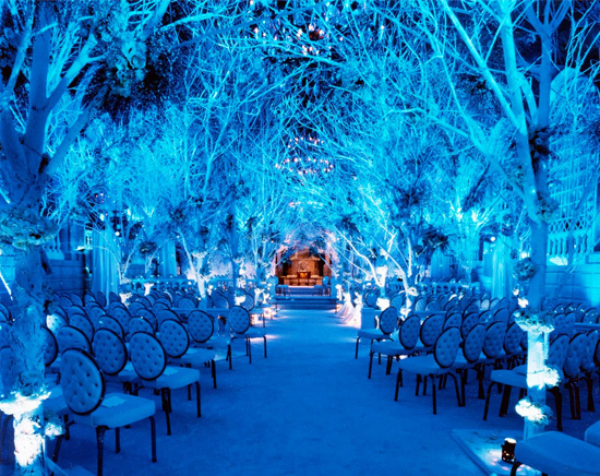 Ceremony, Flowers & Decor, blue
