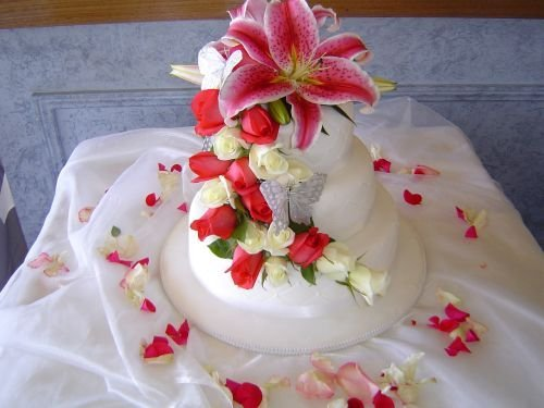 Cakes, white, red, cake, Floral