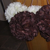 Flowers & Decor, brown, Flowers, Pomander, Balls