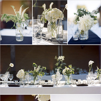 Flowers & Decor, white, Flowers, Color