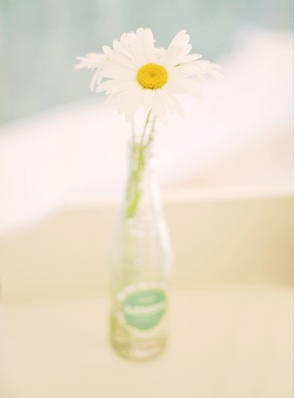 Daisy, Simple, Bottle, Jess brendan