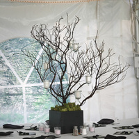 Ceremony, Reception, Flowers & Decor, Cakes, white, pink, green, black, cake, Ceremony Flowers, Centerpieces, Flowers, Flower, Centerpiece, Branch, Inspiration board, Manzanita, Moss