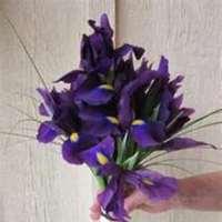Flowers & Decor, purple, Bride Bouquets, Flowers, Bouquet, Bridal