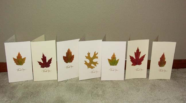 Fall, Thank you cards, Stationary, Leaves