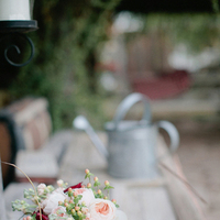 red, Rustic, Roses, Romantic, Lights, Moss, Ranch, Taylor brandon, Twinkling