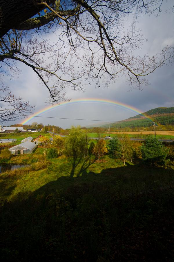 green, Sky, Scenery, Rainbow, Jessica erika