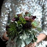 green, silver, Bride, Bouquet, Succulents, Jessica erika, Sparkles