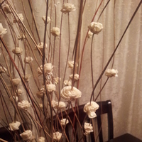 Reception, Flowers & Decor, white, brown