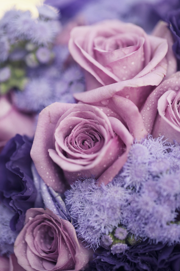 Flowers & Decor, purple, Flowers, Plum, Violet, Sandra juan