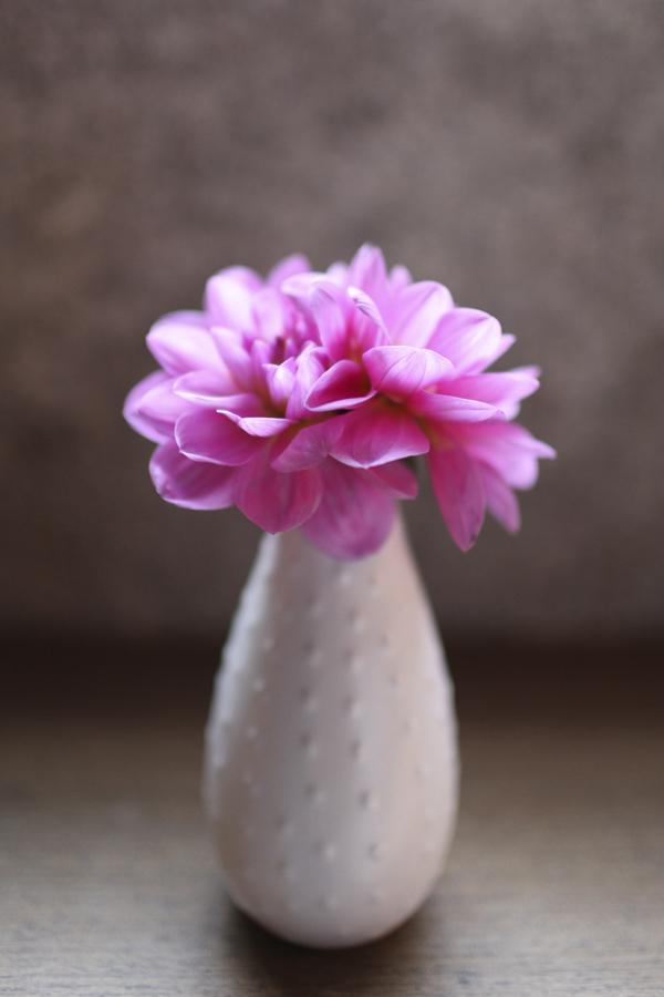 Flowers & Decor, white, Modern, Flower, Vase, Violet, Magenta, Sandra juan
