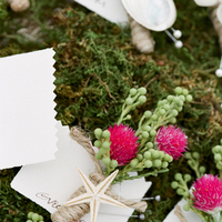 Flowers & Decor, Beach, Boutonnieres, Groomsmen, Shells, Starfish, Fuchsia, Merryl marko