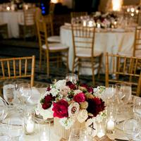 Flowers & Decor, Centerpieces, Place Settings, Flowers, Centerpiece, Merryl marko