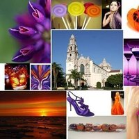 orange, purple, Inspiration board