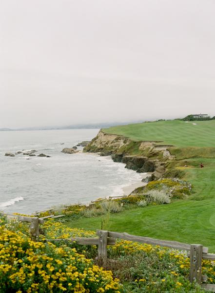 green, Ocean, Bluff, Merryl marko