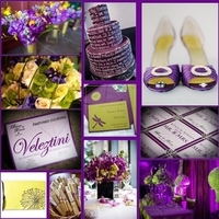 yellow, purple, green, Inspiration board