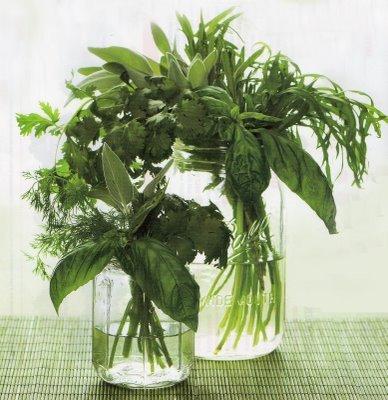 Centerpiece, Herb