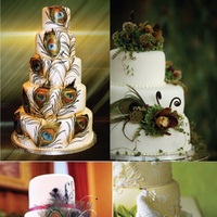 Cakes, cake, Inspiration board, Peacock