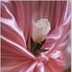 1375142390_small_thumb_20646d71f7f79187732719cb6557db58