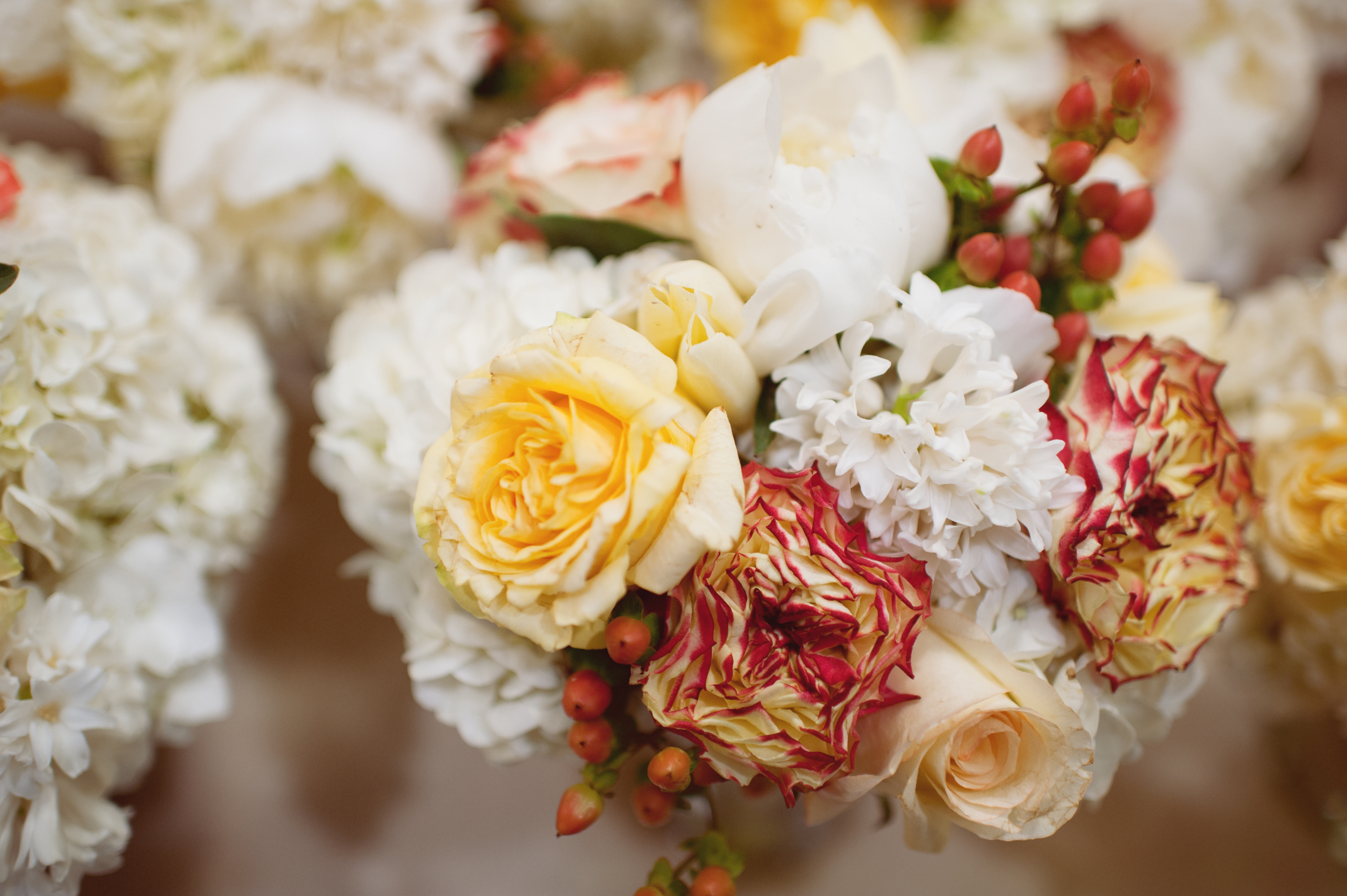 Flowers & Decor, white, yellow, red, Bride Bouquets, Flowers, Bouquet, Jen kevin