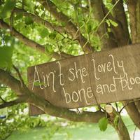 Reception, Flowers & Decor, gold, The, Signs, Lyrics, Shins