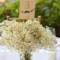 Reception, Flowers & Decor, white, Flowers, Inspiration board
