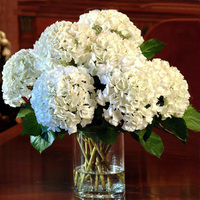 Reception, Flowers & Decor, white, Flowers, Inspiration board